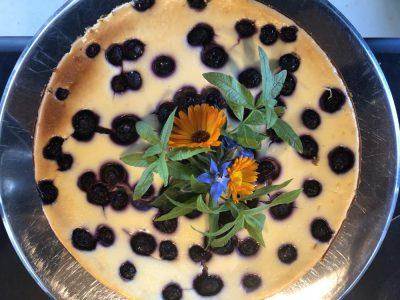 Bosbessen-cheesecake met witte chocolade